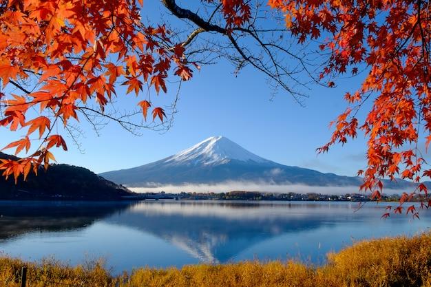Гора фудзи и осенняя листва на озере кавагути