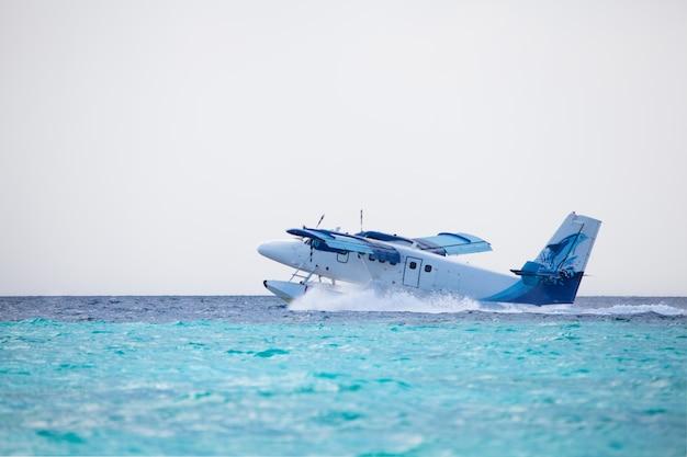 水上飛行機が島の近くの水に着陸しています