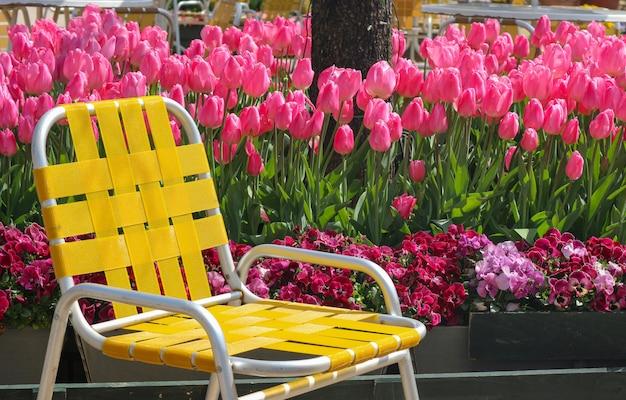 鮮度チューリップ花畑土地の背景を持つ黄色の座席チェア。