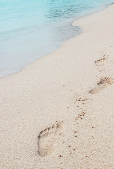 夏の熱帯の休暇の砂の足跡