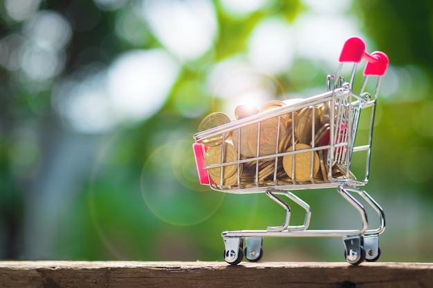 ショッピングカートや庭の木のスーパーマーケットのトロリーのコイン
