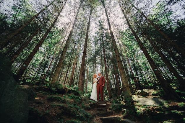 若い結婚式の流行に敏感なカップルの新郎と新婦が夏の日に緑の森で屋外を抱いています。