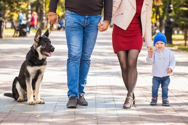 公園を散歩している母、父、そして息子