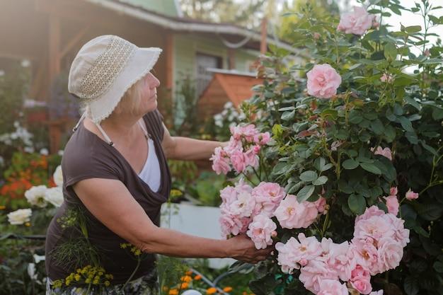 庭で開花ブッシュバラを思いやりのある成熟した白人女性庭師を興奮
