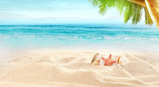 Белый песок и ракушки на пляже, летние каникулы