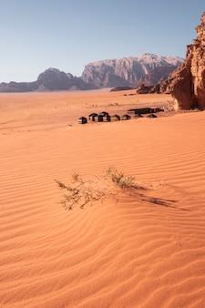 有名な赤い砂漠の背景のベドウィンのツーリストキャンプでとげのある砂丘