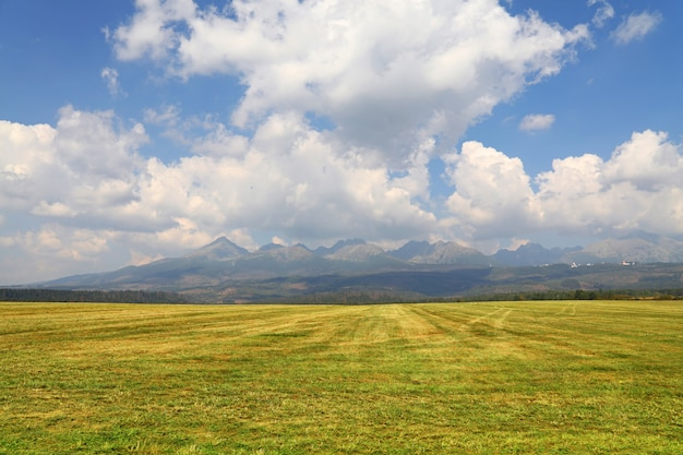 Красивый пейзаж с горами над полем
