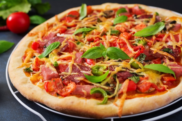 サラミ、ハム、トマト、チーズ、マッシュルームのピザ