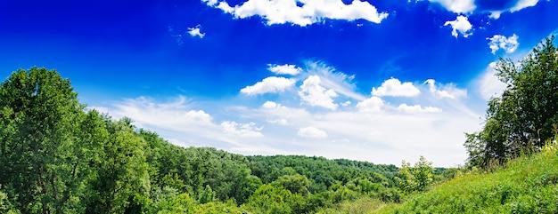 青い空を背景に夏の畑。美しい風景。バナー
