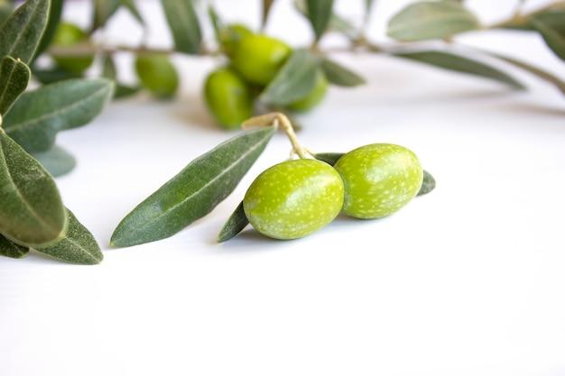 白い皿に新鮮な有機グリーンオリーブ