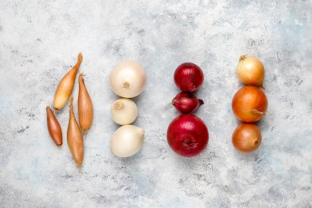 Различные виды лука красный, белый, желтый, лук-шалот, вид сверху