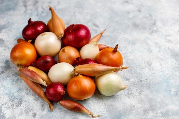 Различные виды лука красный, белый, желтый, лук-шалот