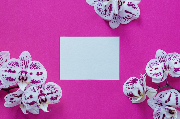 明るいピンクの蘭の花に囲まれた紙のカード
