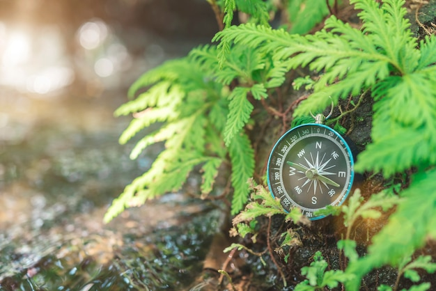 コンパスは日光の滝の近くの緑の植物と岩の上に置きます。旅行の概念
