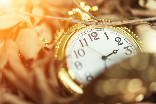 太陽の光で地面に乾燥した葉の上の古い時計のクローズアップ。
