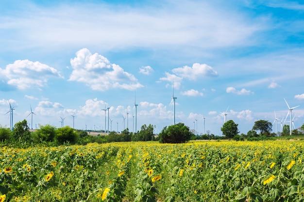 太陽の花畑の代替エネルギーのための風力タービン。