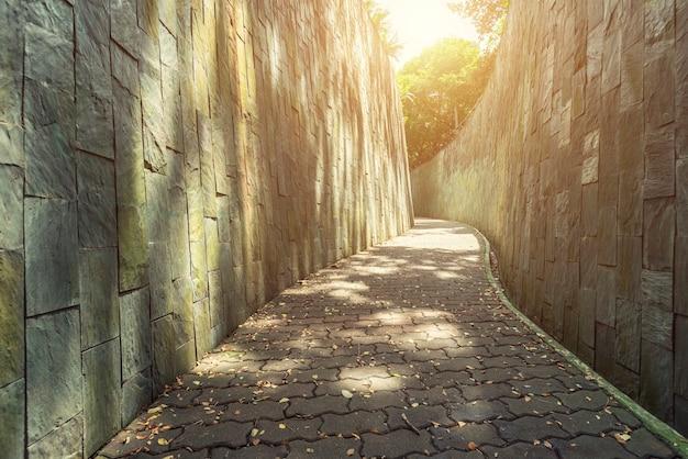 日光で朝の庭の歩道。背景の空のパス。