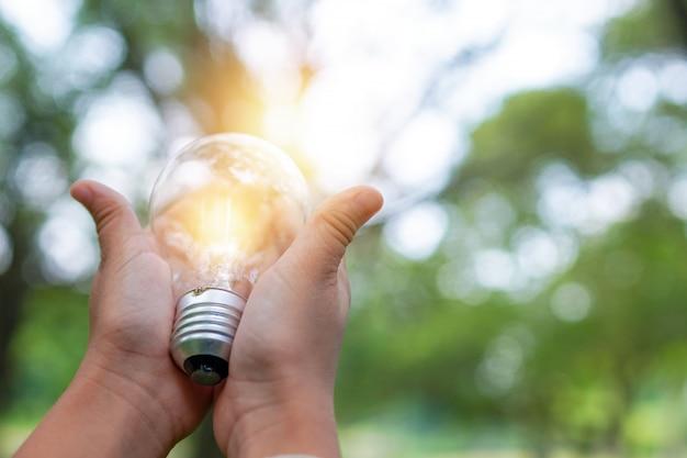 公園で電球を持っている手、自然のための電力と良いエネルギーを節約