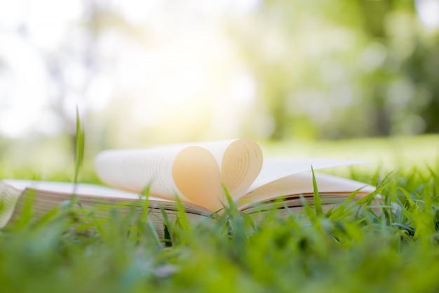 Книга открыта в форме сердца на траве в концепции парка, знаний и образования