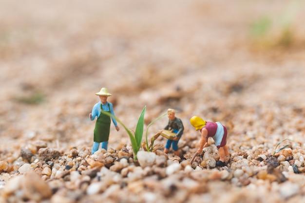 砂漠の農民作業プロット