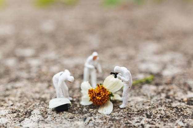 ミニチュアの人々:警察と探偵犯罪現場で花から証拠を見つける