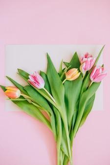 春の背景:ピンクの背景に囲まれたベージュのカードにピンクのチューリップ。スペースをコピーします。