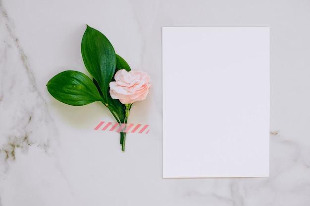 Вид сверху белый чистый бланк для вашего текста, розовые гвоздики и перепелиные яйца на фоне мрамора.