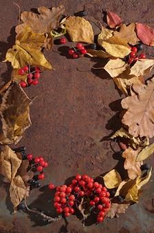 Осенние листья с ягодами на ржавом столе