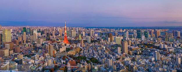 建築の超高層ビルと東京都の夕暮れの青い空の下の公園と近代都市のパノラマ。