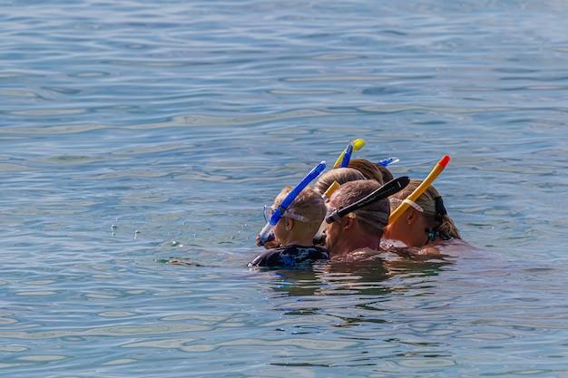 Одна семья занимается подводным плаванием вместе