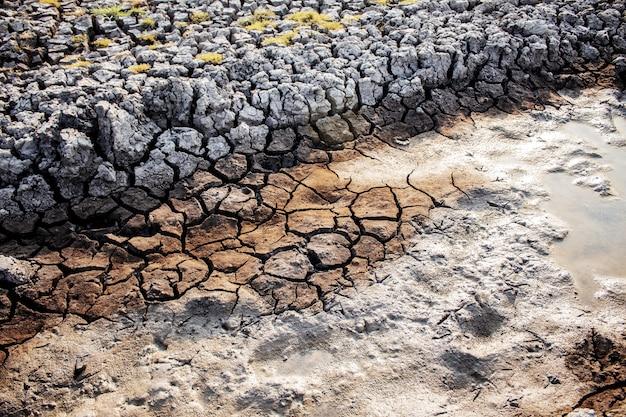 背景と地面の乾燥。
