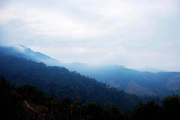 霧の背景を持つ山々。
