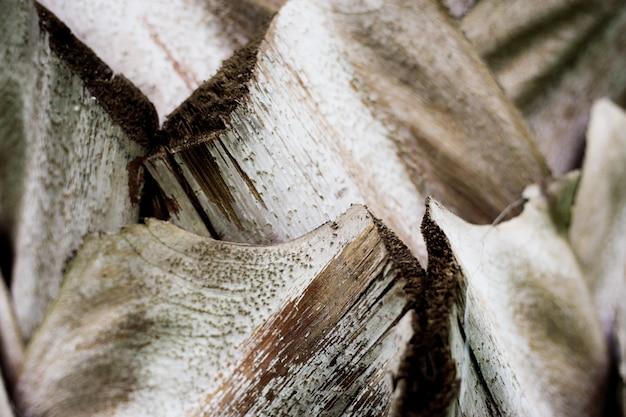 Текстура ладони сухая.