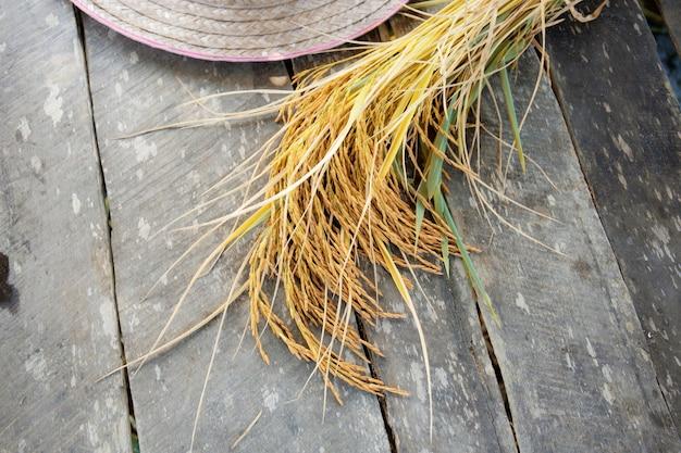 米の木の床の耳。
