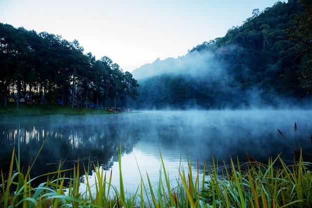 朝の湖の眺め。