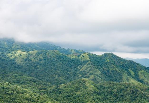 もやの高い緑の山