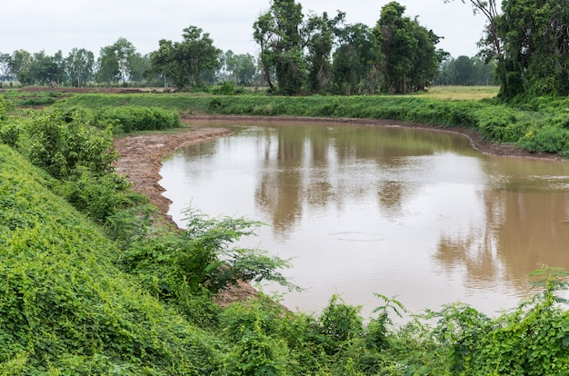 水田における水路の灌漑用水路