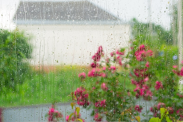 雨の日です。ウィンドウの雨滴。