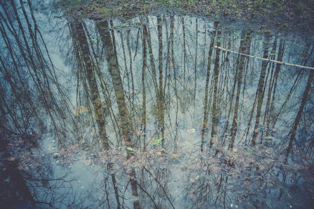 レトロな水たまりに映る木