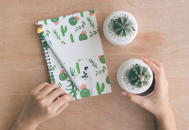 Взгляд сверху тетради изучите и позаботьтесь о кактус на деревянной таблице в доме культивирования кактуса, питомнике кактуса
