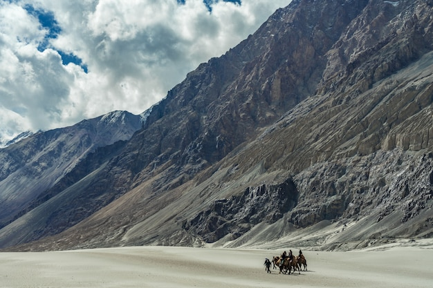 インドのハンダーにある砂丘の上を歩くラクダに乗って楽しむ人々のグループ。