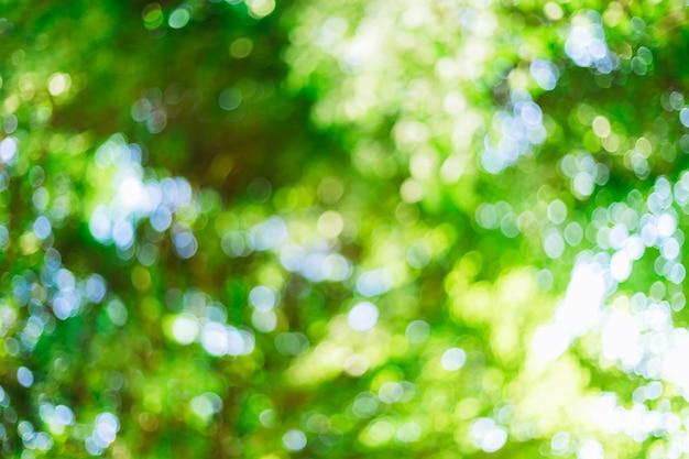 円と緑のボケ味の背景。夏の抽象的なテーマ。