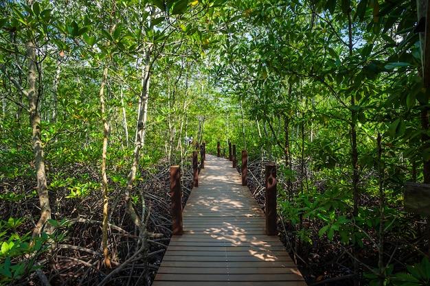 チャンタブリータイの森のマングローブの橋木製歩道。