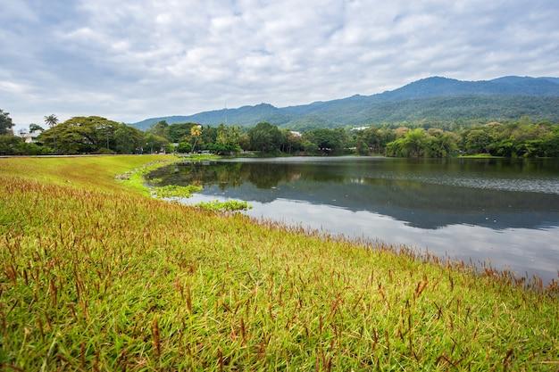 貯水池の青い空と山脈の森