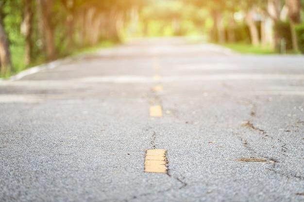 Конец-вверх сельских дорог рядом с лесом природы конспекта нерезкости зеленым с предпосылкой захода солнца вечера.
