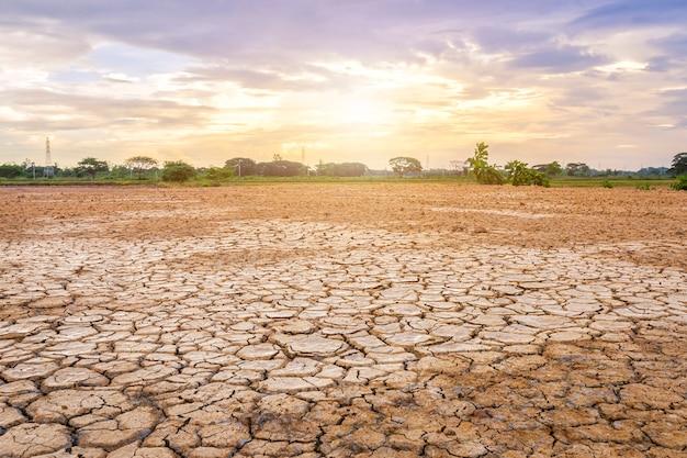 Коричневая сухая почва или растрескавшаяся земля