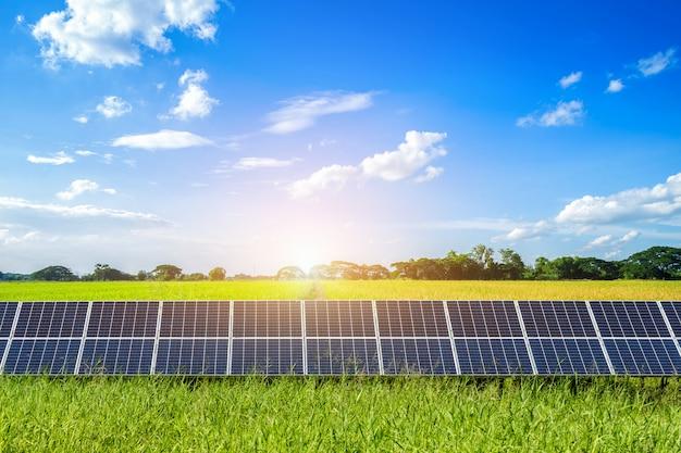 雲と青い空を背景にトウモロコシ畑とライスゴールデン黄色の風景の太陽電池パネル。