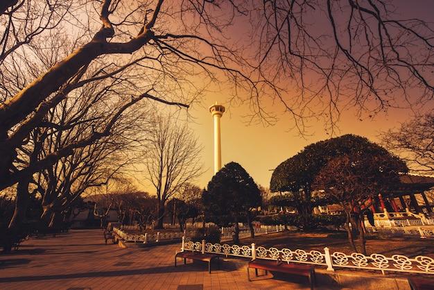 韓国釜山の日没でシルエットの大きな木の釜山タワー。