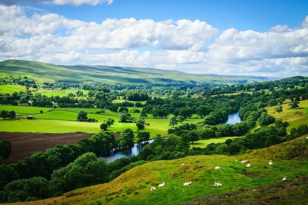 英国の緑豊かな田園地帯を流れる蛇行する川
