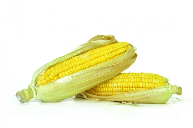 Кукурузные початки или кукурузные початки, изолированные на белом